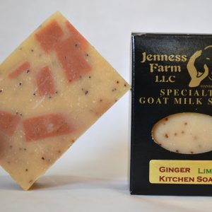 Ginger Lime Kitchen Soap-0